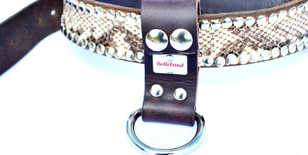 Bolleband fine lether craft for dog and owner